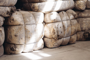 Flece Patrol: how organic wool from Patagonia is creating sustainable luxury